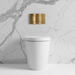 Lusso Rimless Toilets Stylish Design Innovative